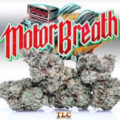 Motor Breath strain,motorbreath strain