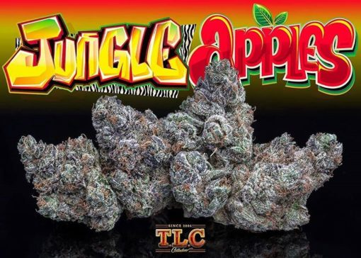 Buy Jungle Apples