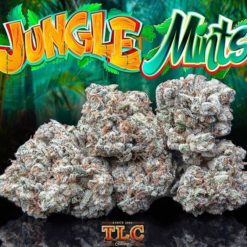 jungle boys weed