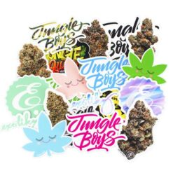 Random Sticker Pack (7)