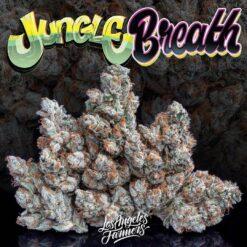 buy buy jungle breath
